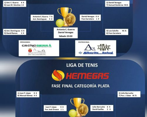Finales Liga Hemegas